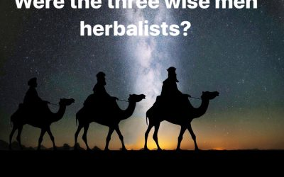 WERE THE THREE WISE MEN HERBALISTS?